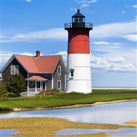 Olde Cape Cod - Martha's Vineyard & Provincetown