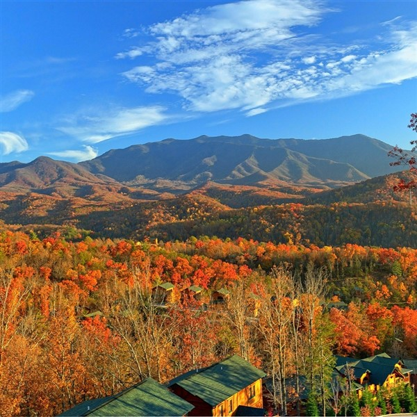 'FALL'ing ForThe Smoky Mountains